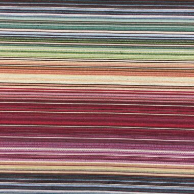 New World Lines Tapestry Fabric