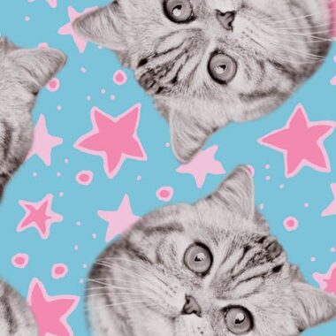 Cats Rule Superstars Camelot Cotton Fabric