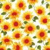 Sunflowers Rose and Hubble Cotton Fabric