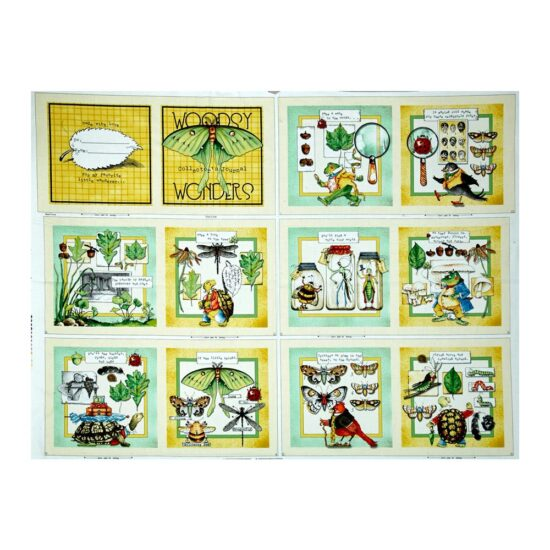 Woodsy Wonder Story Book Panel Quilting Treasures