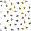 Humble Bumble Bee Poly Cotton Fabric
