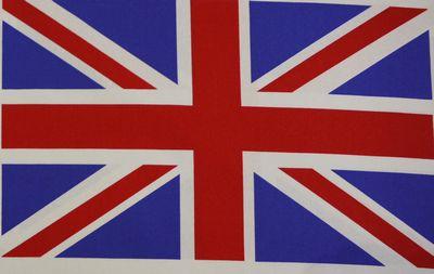 Union Jack 9 Flags Cotton