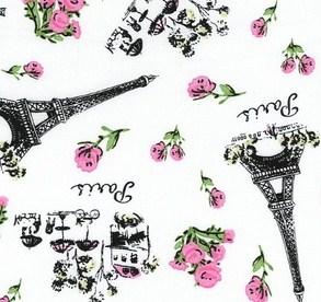 Timeless Treasure Paris Fabric