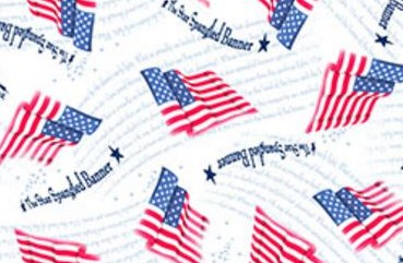 Star Spangled Banner Quilting Treasures Fabric