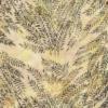 Sea Island 6291 Batik Fabric