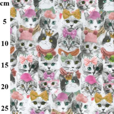 Pretty Pussy Cat Organic Digital Jersey Fabric John Louden