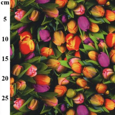 Tulips Digital Print Cotton Canvas Print Fabric